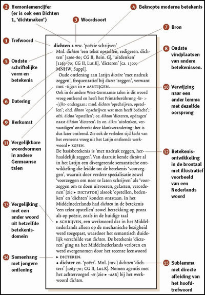 franse nederlandse woorden